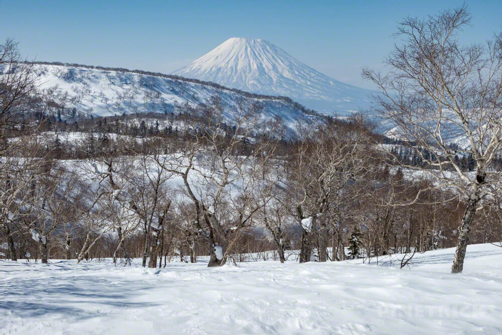 無意根山 豊羽元山コース 登山 北海道 定山渓 千尺高地 羊蹄山