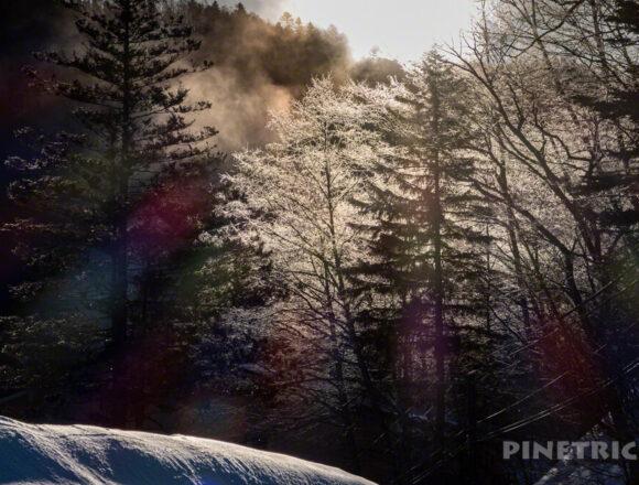 トムラウシ山 登山 山スキー 東大雪荘 他移動