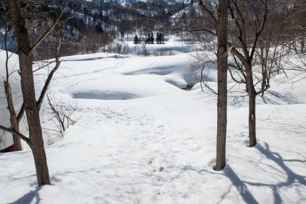 美比内山 取付き 登山口 北海道