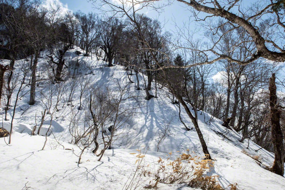 風不死岳 北尾根ルート 北海道 登山