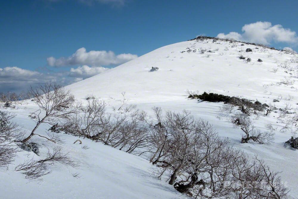 ニトヌプリ ニセコ スノーシュー 登山 北海道 ニセコパノラマライン 南峰