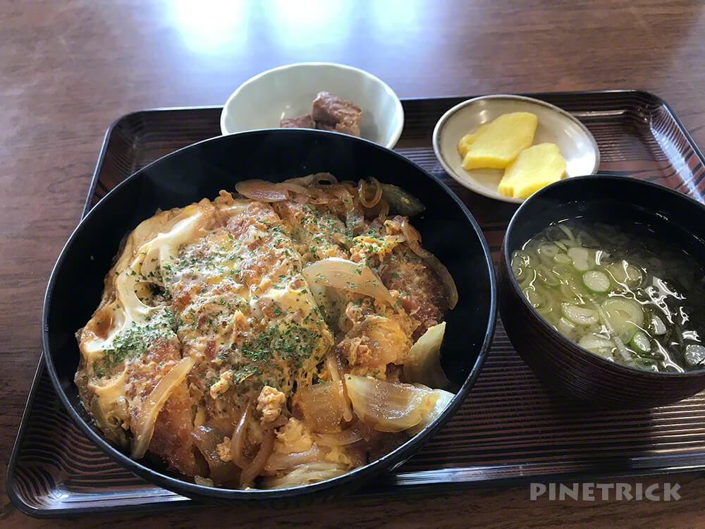伊達温泉 カツ丼 サウナ