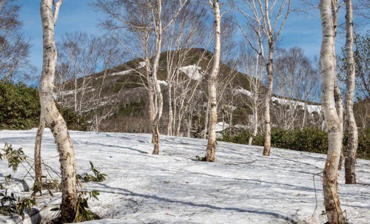 昆布岳 登山 北海道 残雪