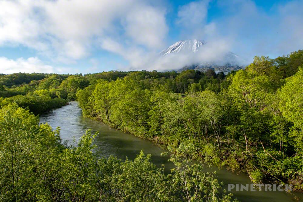 羊蹄山 新緑 北海道 川