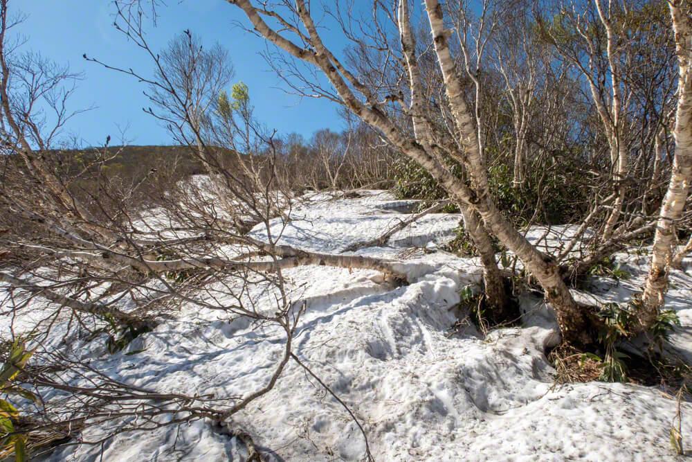 岩内岳 登山 北海道 残雪