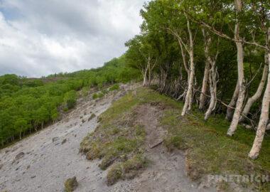 苔の回廊 楓沢 風不死岳 登山 北海道