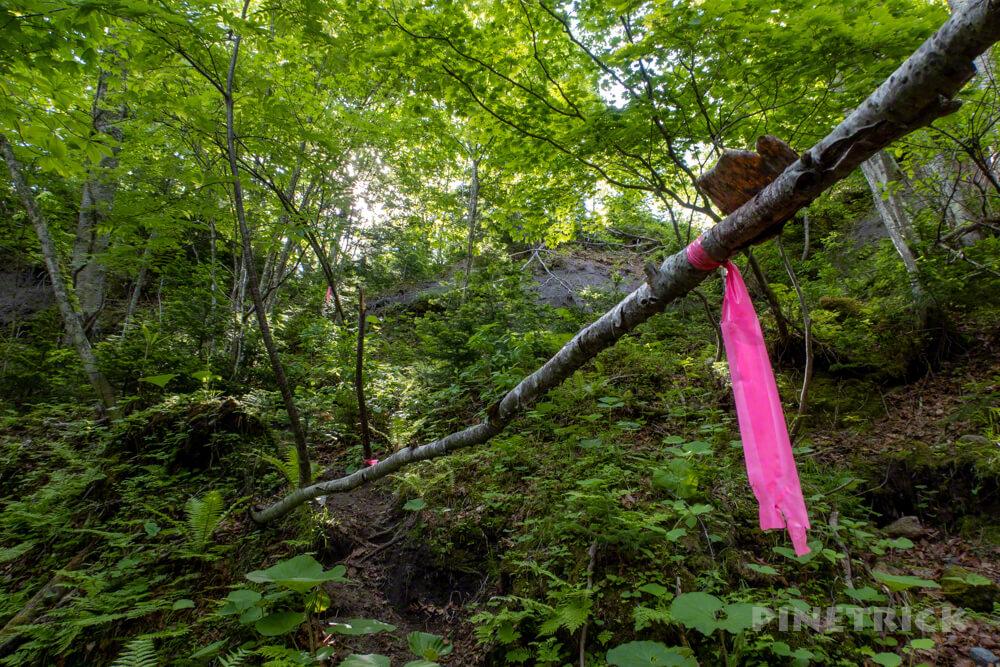 苔の回廊 楓沢 観光名所 北海道 第二回廊