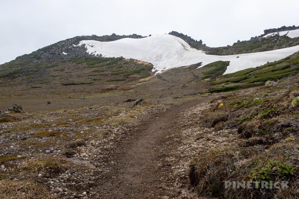 白雲岳 ゼブラ雪渓 登山 北海道