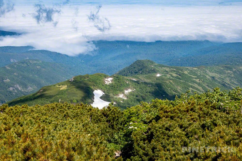 暑寒別岳 登山 北海道 暑寒コース 山頂台地