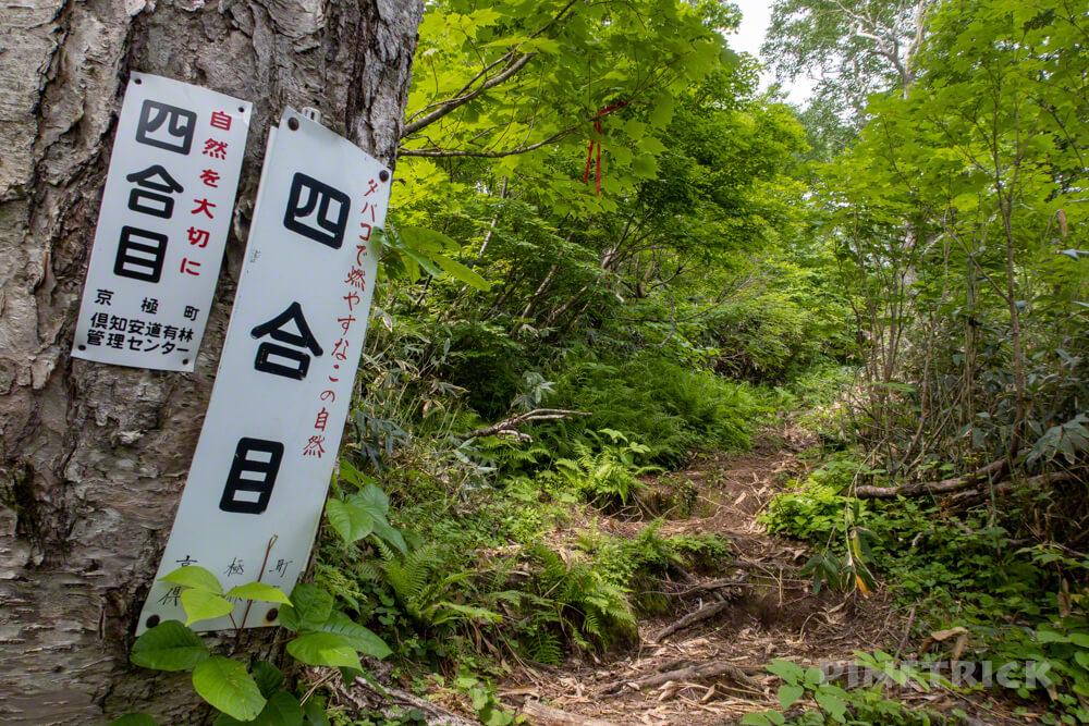 羊蹄山 京極コース 登山 北海道 4合目