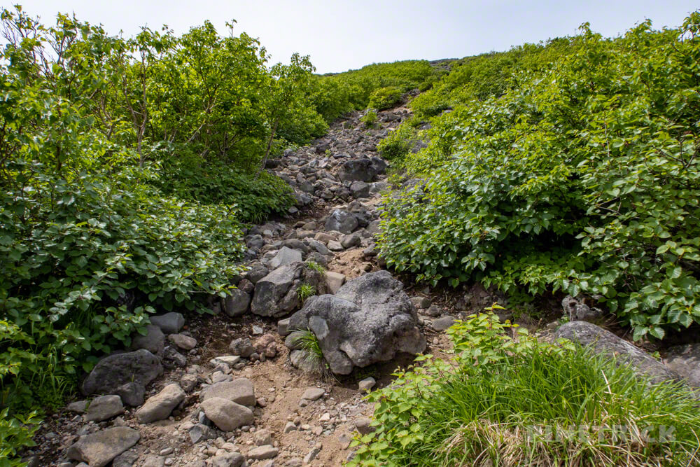 羊蹄山 京極コース 登山 北海道