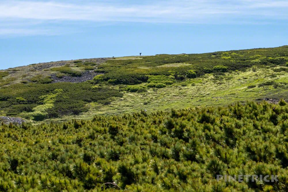 登山 北海道 天人峡コース