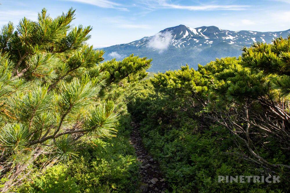 天人峡コース 登山  北海道 旭岳