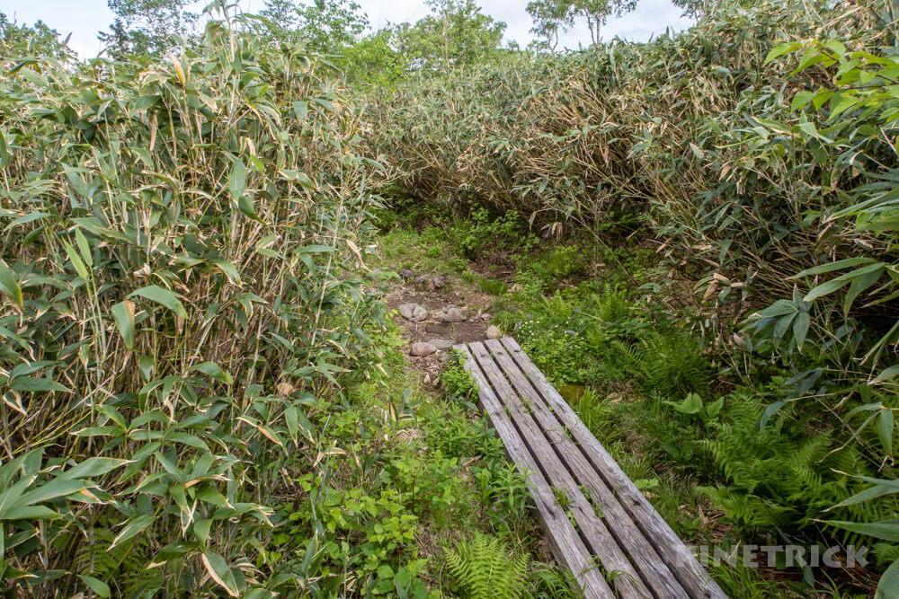 天人峡コース 登山  北海道 第一公園 木道