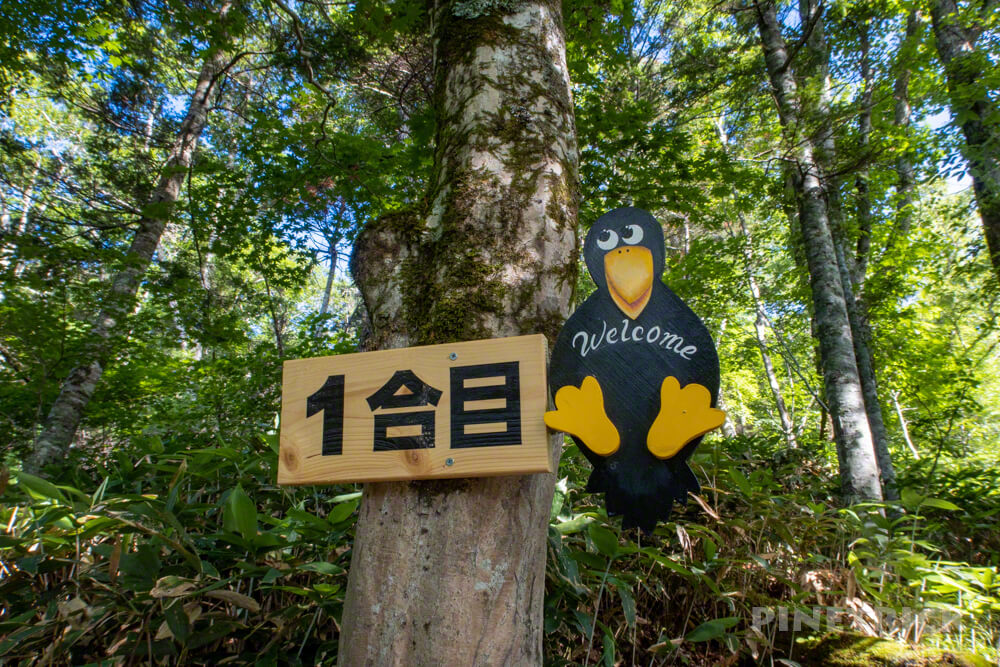 イチャンコッペ山 登山 北海道 1合目 カラス