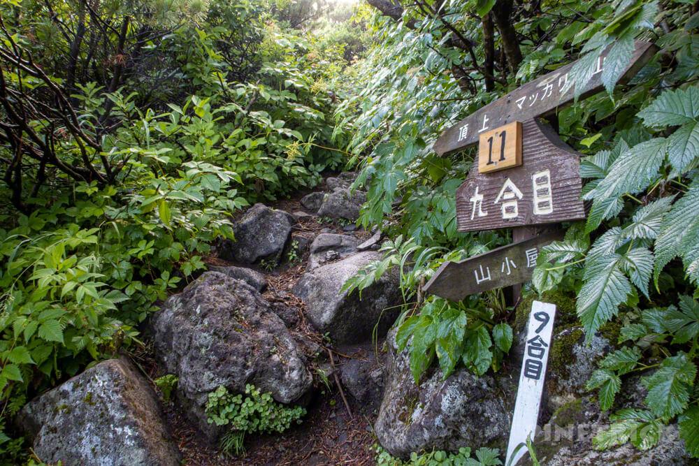 羊蹄山 真狩コース 登山 北海道 9合目 分岐