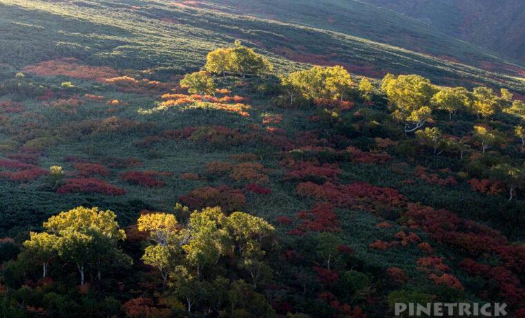 愛山渓温泉 沼の平分岐 紅葉 登山 北海道