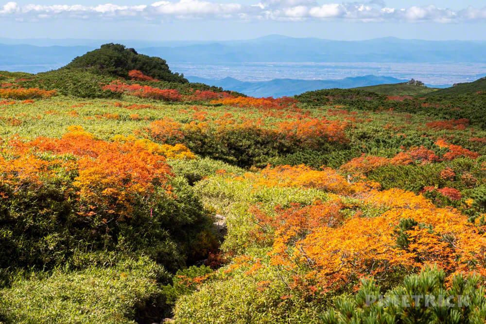 大雪山 登山 北海道 紅葉