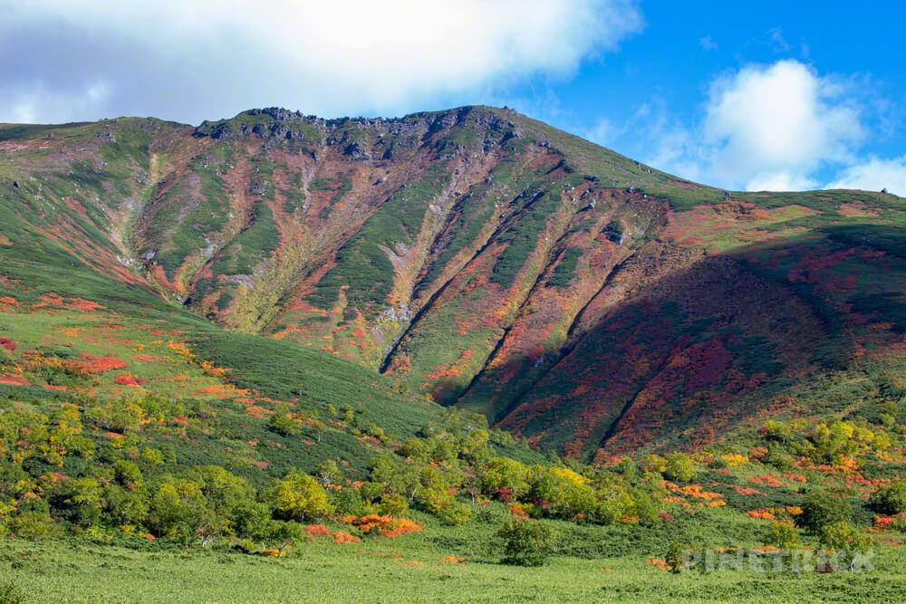 大雪山 登山 北海道 紅葉 沼の平 当麻岳