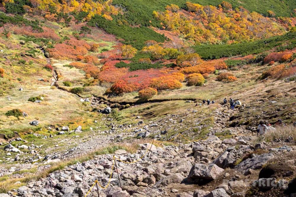 銀泉台 白雲岳 赤岳 登山 北海道 紅葉