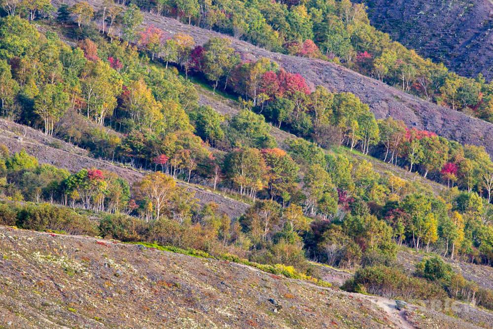 樽前山 登山 北海道 紅葉
