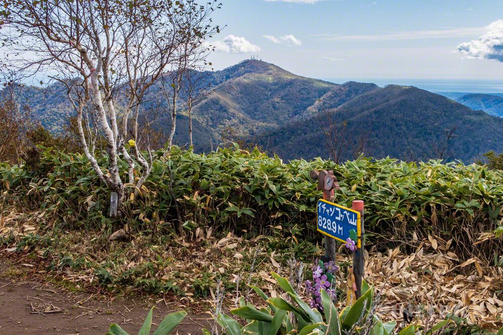 イチャンコッペ山 登山 北海道 山頂 紋別岳