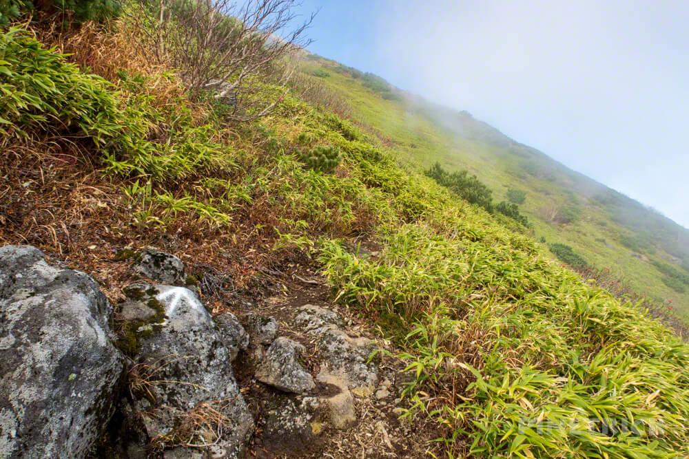 羊蹄山 喜茂別コース 登山 北海道