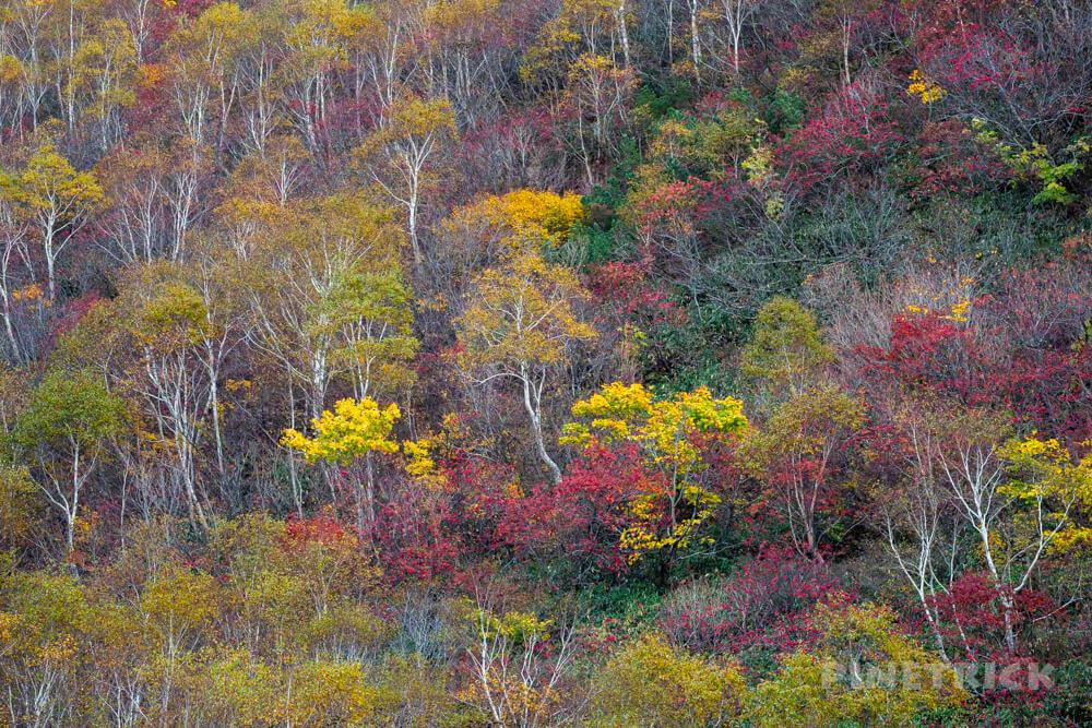 ニセコアンヌプリ 登山 北海道 鏡沼 紅葉